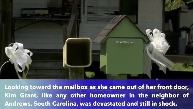 South Carolina neighbors honors murdered mail carrier with bows on every mailbox