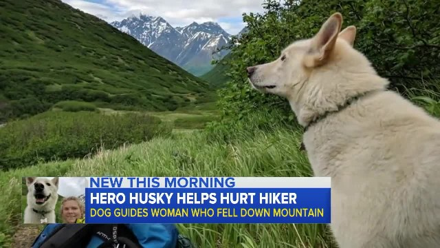 Deaf hiker falls 300 feet and she isn't alone when they find her