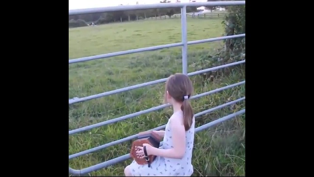 Girl plays accordian to a herd of cows—you would be surprised how the cows reacted