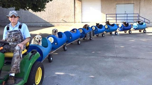 82-year-old retired man finds a new calling, builds a dog train