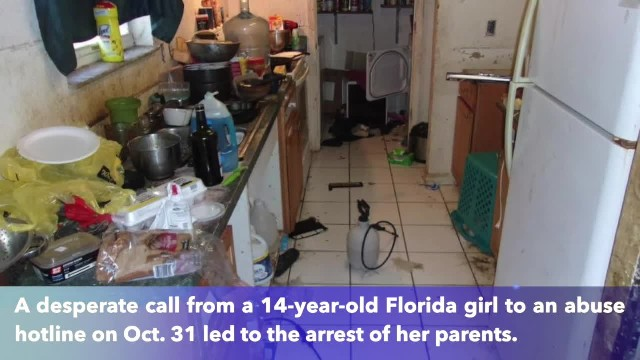 Florida girl, 14, calls abuse hotline contemplating suicide due to living conditions