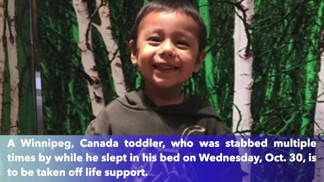 Canadian toddler stabbed while he slept to be taken off life support