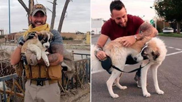 Soldier finally reunites with a puppy that he saved months