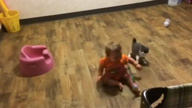 Watch as this adorable kitten pounces on the baby and plays with a ball.