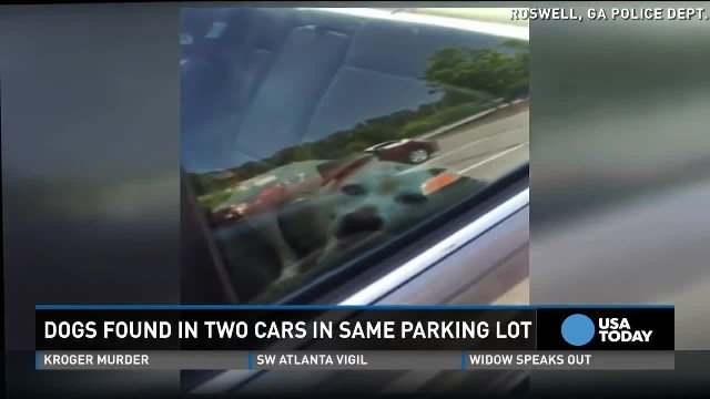 Police rescue two dogs in hot cars in same lot