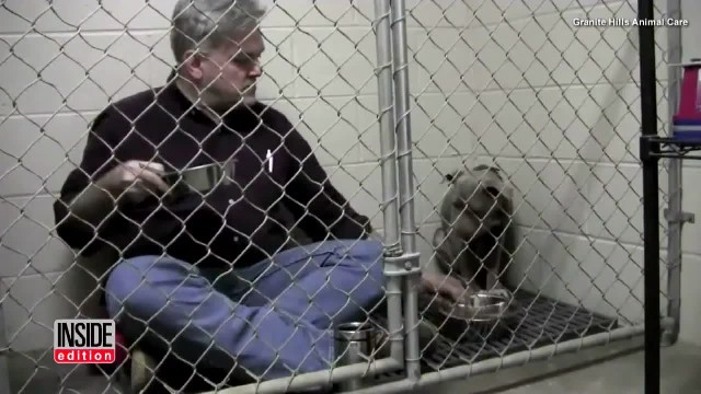 VET EATS BREAKFAST IN ABUSED PIT BULL'S CAGE TO MAKE HER FEEL COMFORTABLE