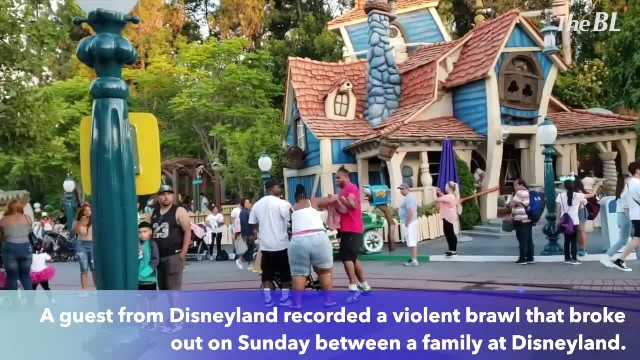 Violent family brawl at Disneyland as children watch!