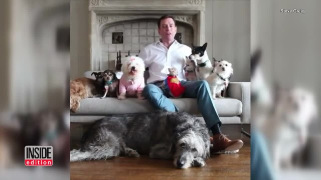 Man devotes his life to adopting elderly animals who can't find forever homes