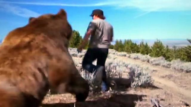 Man saves abandoned grizzly bear cub. Six years later this is how he's thanked