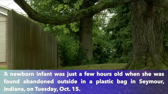 Infant found abandoned in plastic bag in Indiana was only a few hours old, police say