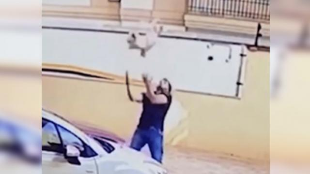 Camera catches the heroic moment a man rescues a dog falling nine stories from balcony