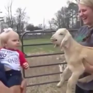 Little girl imitating a goat  very funny and sweet  - Rumble