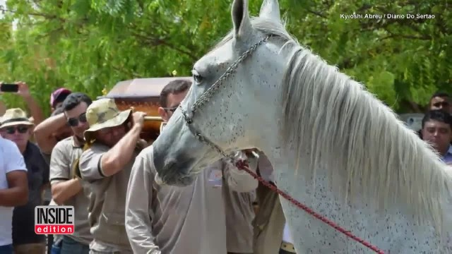 Grieving horse smells his beloved owner's casket and breaks down at his funeral