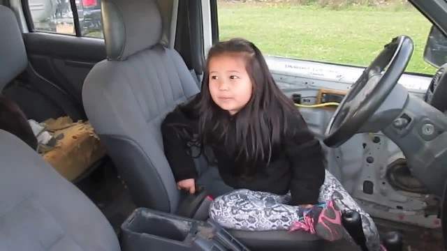 Stranger Tried To Take Little Girl Out Of Car, Then Her German Shepherd Teaches Him A Lesson