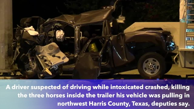 3 horses killed in possible DWI crash when driver pulling trailer hits pole in NW Harris Co.