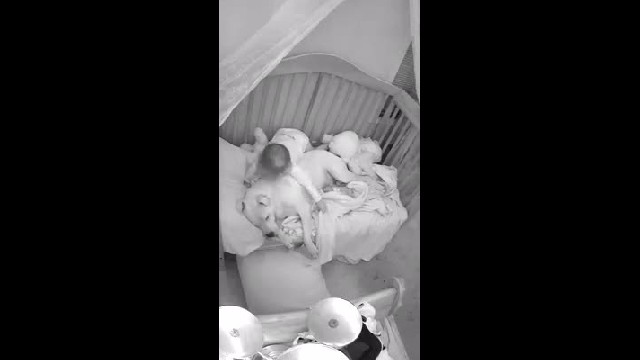 Dad lets 100 lb pit bull sleep in crib with baby only to have captured footage make headlines
