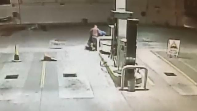 Stray dog rescued by gas station saves the day during attempted armed robbery