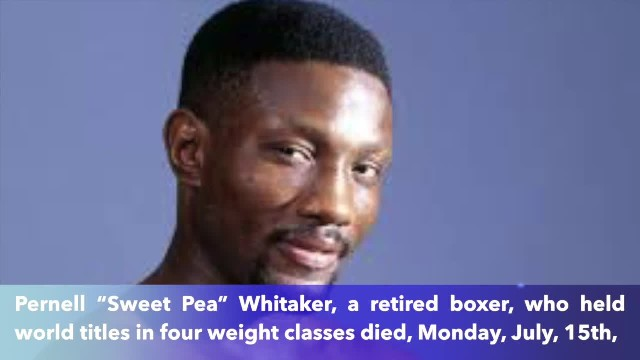 Boxing great Pernell 'Sweet Pea' Whitaker dies after being hit by car in Virginia Beach