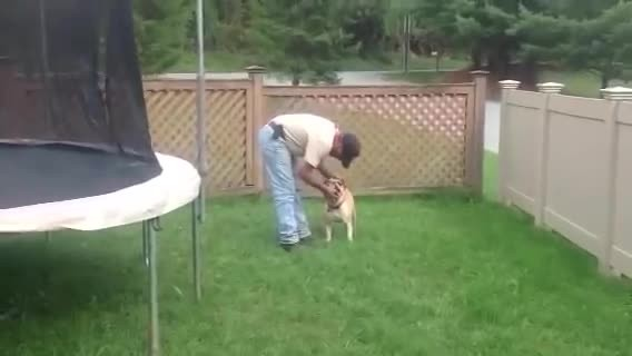 I Thought This Guy Was Being Mean To His Dog. Then… OMG! I Couldn't Stop Laughing
