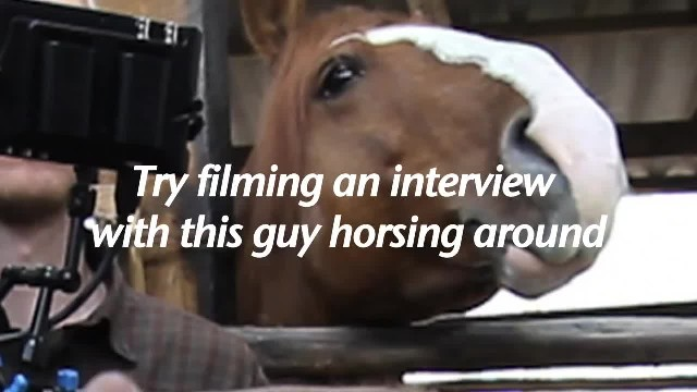 Man tries not to laugh while filming while horse's actions have everyone losing it