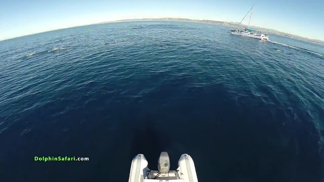 Man flies drone over ocean and captures very rare event