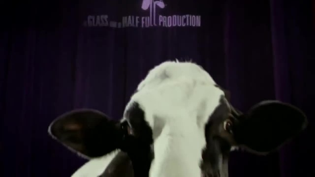 Farmer Notices His Cow Has Special Talent. Her 'Moves' Have Internet In Laughter