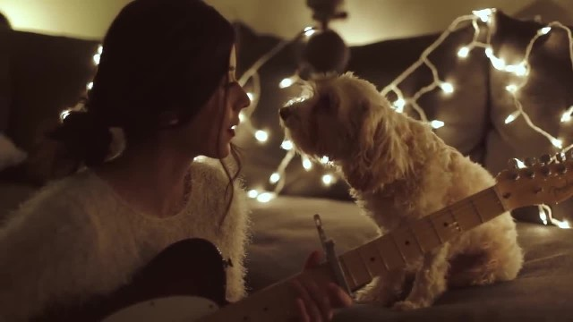 Woman Serenades Her Dog With Christmas Song - Dog's Reaction Shows Christmas Magic Is Real