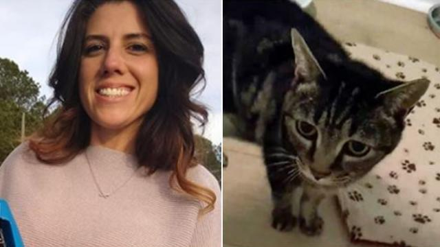 Long-lost cat finally reunited with owner after going missing