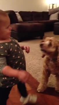 Toddler imitates pregnant mom's walk in hilarious video clip
