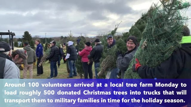 Michigan farm donates 500 Christmas trees to military families for the holidays!