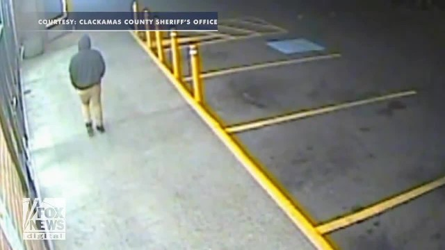 Hatchet-wielding thief backs down when store clerk pulls out