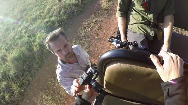 Man straps camera to lioness years after saving her life ignores caution and gets up close