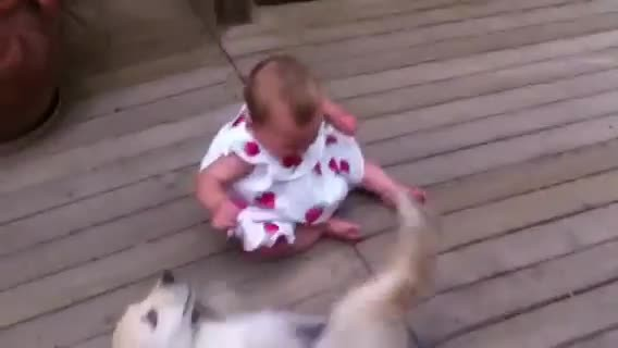 Mom was warned not to let pup near baby, but she did anyway & started filming