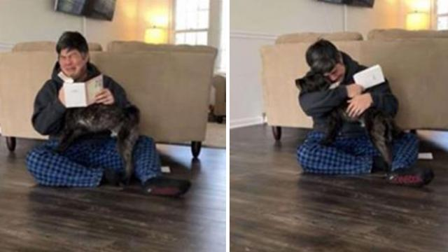 Man collapses into tears when wife tells him they can keep their foster dog