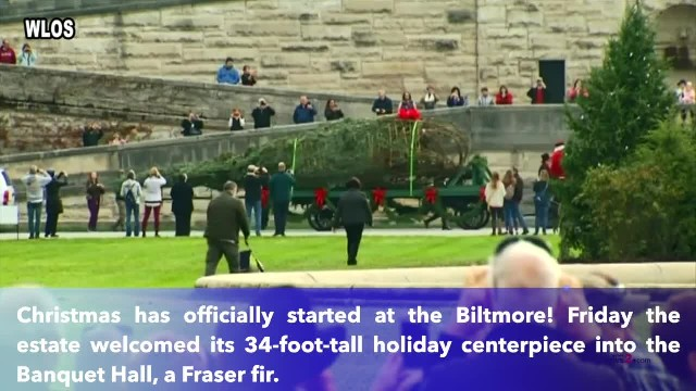 34-Foot-Tall, 2,000-pound Christmas Tree arrives for the Holidays in the Biltmore House