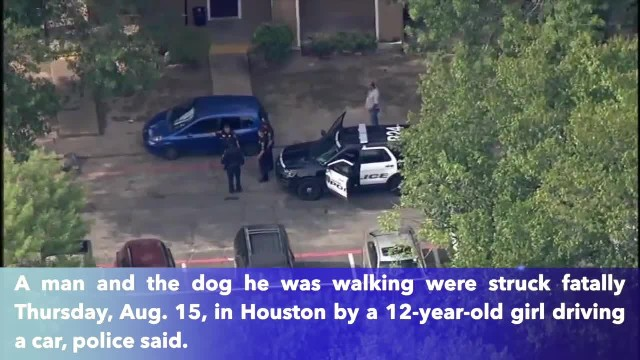 Man and dog killed by car driven by 12-year-old girl in SW Houston
