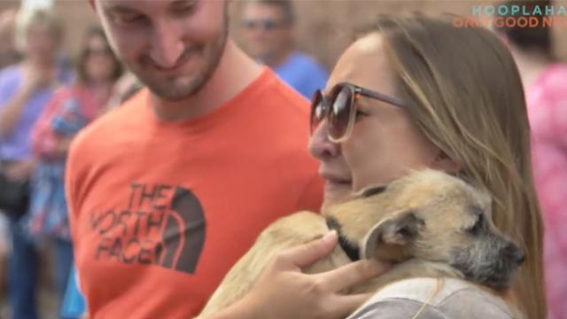 Couple adopts dog without meeting him first, then rescue truck pulls up and trailer door opens
