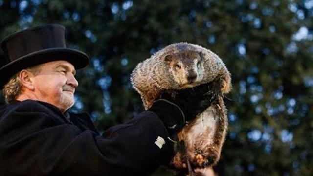 Groundhog Day- Punxsutawney Phil doesn't see his shadow, predicts an early spring