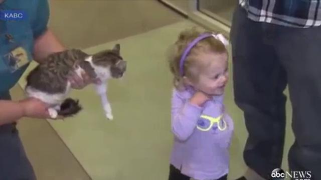 Three legged kitten meets one-armed girl, then everyone witnesses story made in heaven