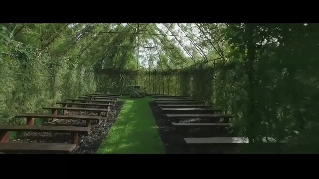 Man Spends 4 Years Building Church From Living, Breathing Trees – Take A Look Inside, It's Magical