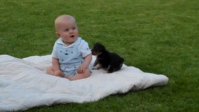 Adorable Baby And Puppy Have a Cute Moment