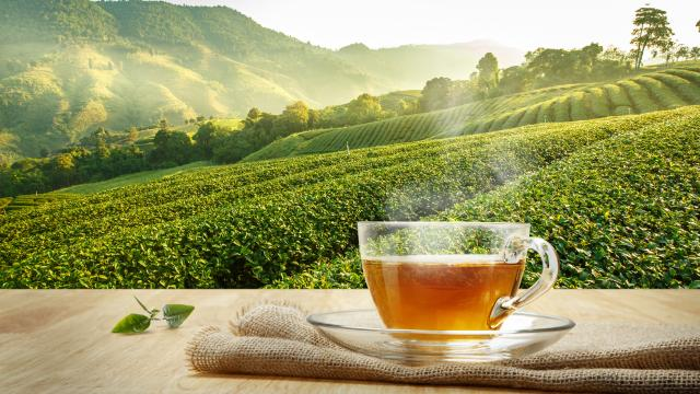 The deep connection between tea and spirituality