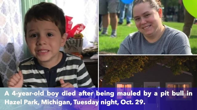 4-year-old Michigan boy fatally mauled by pit bull at home
