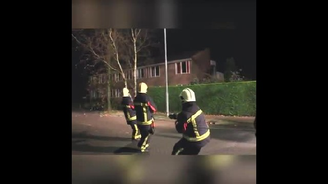 Firefighters group couldn't stop laughing when a passing dog decided to give them a helping hand