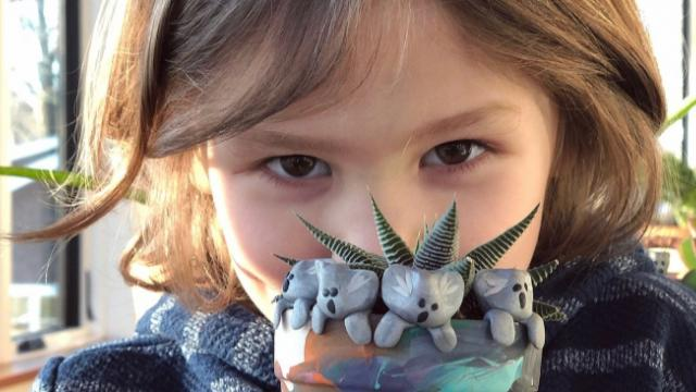 Massachusetts boy making clay koalas to raise money for wildlife affected by Australian bushfires