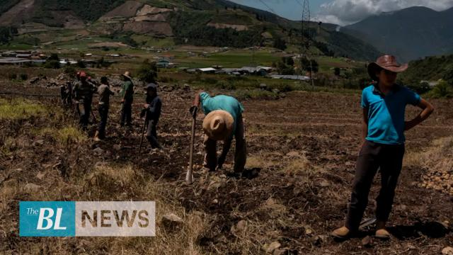Venezuela: Lack of gasoline causes slump in food production