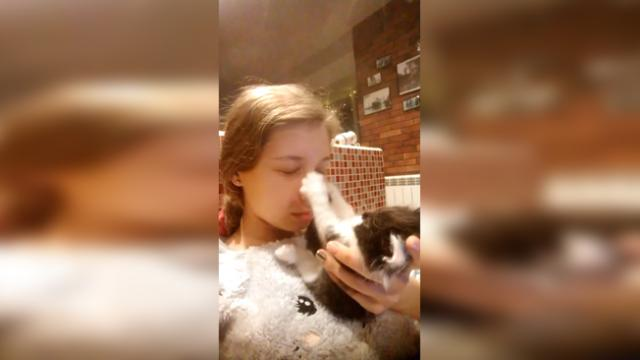 Adorable kitten Hope can't stop playing with her owner's nose, and it's hilarious to watch!