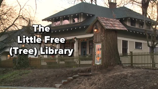 Woman Turns The 110-Year-Old Tree Stump In Her Yard Into A Magical Miniature Free LibraryTaylor Viyd