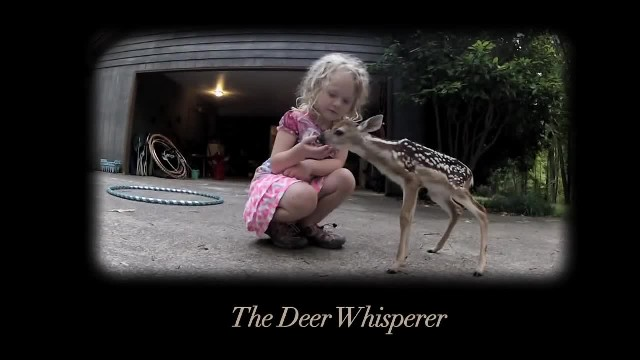 Tiny newborn fawn walks up to little girl – now watch carefully when she reaches her hand
