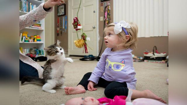 Three-legged kitten meets one-armed girl then everyone witnesses